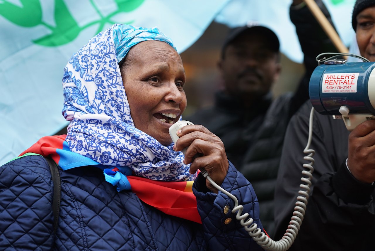 _Democracy for Eritrea Rally Legesset Ghede-1
